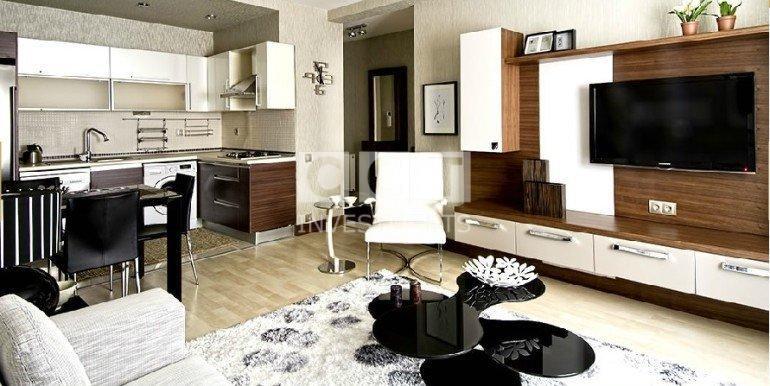 Esenyurt Living Room