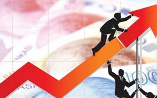 نمو-الاقتصاد-التركي-في-عام-2015-صورة