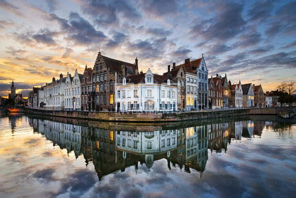 Brogue-Belgium