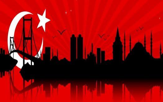 الاستثمارات في تركيا صورة