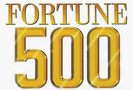 Fortune Turkey 500 image