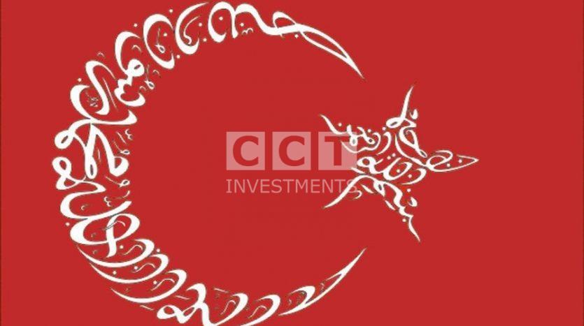 Arabic Language Role in Turkey image