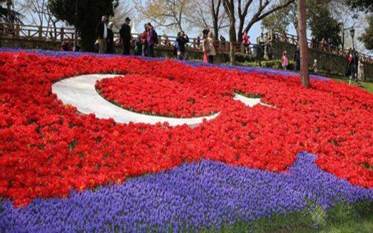 Tulip-Festival-1