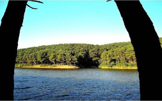make-aydos-forests-your-next-destination-photo
