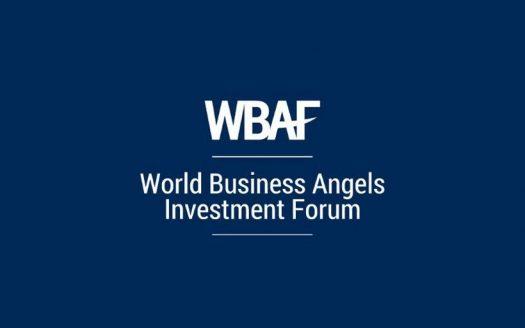 المستثمرون-الملائكة-حول-العالم-يلتقون-في-اسطنبول